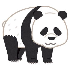 animal_bear_panda.png